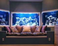 Salt water fish tank! This would be awesome!