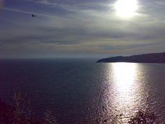 Ulysses Riviera
