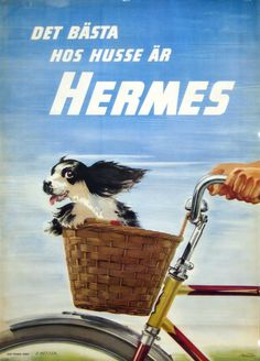 Det bästa hos husse är Hermes