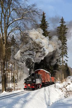 Steam train in the Ore Mountain with locomotive 99 1590-1. The freight train is a special narrow gauge train with roll cars and standard gauge freight cars on top.