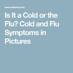 Parsing the difference between a cold and flu isn't so easy. WebMD's slideshow explains how to tell the difference - and how to treat your symptoms. Flu Symptoms, Signs And Symptoms, Flu Remedies, Health Problems, Health Tips, Health Fitness, Cold, Pictures, Medical
