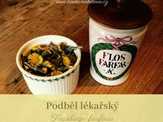 Pesto z bršlice Pesto, Nutella, Gardening Tips, Flowers, Food, Syrup, Biology, Essen, Meals