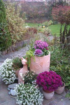 Léleksimogató őszi színkavalkád a balkonra