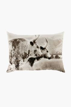 Printed Nguni 40x60cm Scatter Cushion
