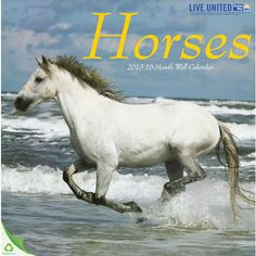 Horses Wall Calendar: Wild to domestic, these proud and majestic animals showcase their natural power and beauty in these 12 stunning images. Enjoy these amazing horses as they trot and gallop across wide-open terrains.  http://www.calendars.com/Horses/Horses-2013-Wall-Calendar/prod201300011771/?categoryId=cat00341=cat00341