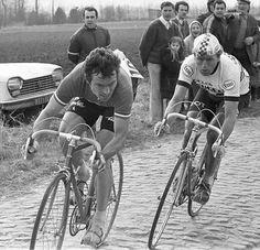 1979-1980 - Peugeot - Paris-Roubaix