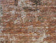 Historic Brick is an old aged brick texture with a highly realistic faux finish look. Use it to create the raw industrial look of brick in your bedroom or dining room. Historic Brick Old Aged Brick Raw Digital Home Wall Mural by Walls Republic Old Brick Wall, Faux Brick, Exposed Brick, Whitewashed Brick, Brick Walls, Stone Wallpaper, Wallpaper Size, Wallpaper Samples, Wallpaper Panels