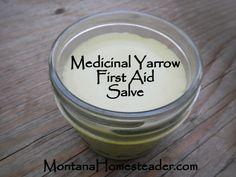 How to make a homemade medicinal yarrow first aid salve Montana Homesteader