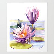 Water Lily,  Lotus Art Print