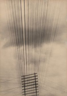 "Tina Modotti. Telephone Wires, Mexico. c. 1925. Palladium print. 8 15/16 x 6 5/16"" (22.8 x 16.1 cm). Gift of Miss Dorothy M. Hoskins. 726.1959. Photography"
