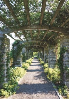 Long Walk Pergola Terrace Covering with Old Stone and Plant Growth - Luxe Interiors + Design