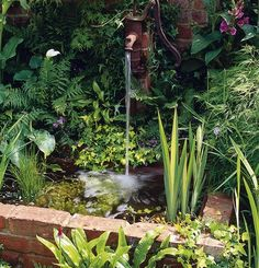 Raised Pond. A garden pond can be enclosed with materials to match the home. In this case, bricks have been used.