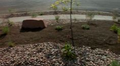 How to Create a Xeriscape by Staker Parson