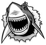 shark mouth tattoo - Great White Shark ripping with opened mouth vector image on Shark Jaws, Shark Logo, Shark Silhouette, Silhouette Cameo, Silhouette Images, Shark Mouth Open, Shark Tattoos, Funny Tattoos, Atelier