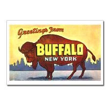 #Buffalo NY Postcard  Buffalo NY in Upstate New York Yo  Repin  Thank you    http://www.linksbuffalo.com/place/beaver-meadow-audubon-center/