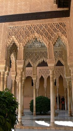 La Alhambra, Granada, Spain - I got there too late to get tickets in the morning. Don't make my mistake!!