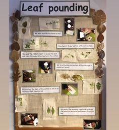 Hate displays but love making them when they display process led work that the hils ten are proud of and can reflect upon. Autumn Display Eyfs, Autumn Display Boards, Display Boards For School, School Displays, Forest School Activities, Eyfs Activities, Nursery Activities, Classroom Displays Eyfs, Eyfs Classroom