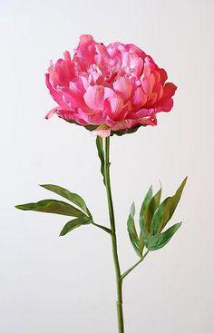 véronneau, plantes et décors :: fleuristerie :: fleur artificielle