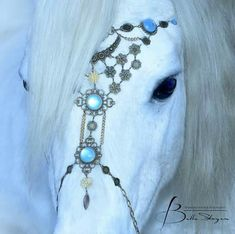 Beautiful white horse, extremely beautiful face and pretty fancy halter with moonstones and silver, amazing horse Photography: Spirit Of Moments - by Bella Steger. Please also visit www.JustForYouPropheticArt.com for colorful inspirational art. Thank you so much! Blessings!