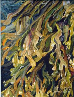 Seaweed  Painting by Helen Shideler