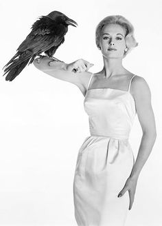Tippi Hedren in a promotional photo for The Birds, Alfred Hitchcock´s movie. Tippi Hedren, Vintage Hollywood, Classic Hollywood, Tv Movie, Movies, Movie Photo, The Birds Movie, Portfolio Fashion, Male Model