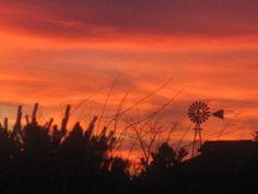 A perfect prairie sunset
