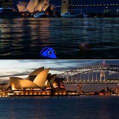 Sigue nadando, sigue nadando... y llegamos Sidney, la ciudad que aparece en Buscando a Nemo (2003). ... - ELLE.es