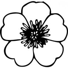 Buttercup Flower clip art Vector clip art - Free vector for free download