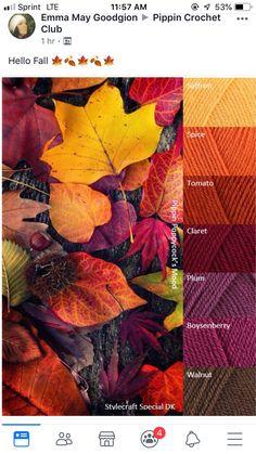Yarn Color Combinations, Color Schemes Colour Palettes, Colour Pallette, Color Harmony, Color Balance, Pantone, Inspiration Art, Color Plan, Color Studies