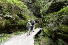 ©Michael Bader/Wandern auf dem Malerweg Elbsandsteingebirge Sächsische Schweiz