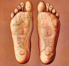 Benefits of foot reflexology. Foot reflexology is a type of pressure massage on the feet, especially on the soles, to indirectly stimulate the vital organs and glands of the body, making them healthy. Thai Massage, Foot Massage, Reflexology Massage, Reflexology Points, Acupressure Points, Foot Reflexology Chart, Acupressure Chart, Acupressure Therapy, Heel Pain