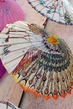 painted parasol... for my mama who loves peacocks