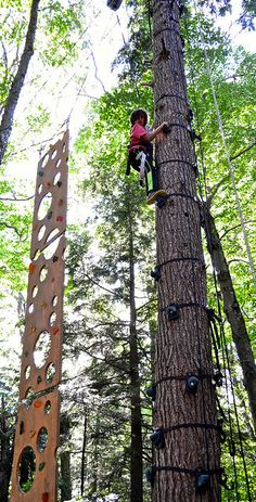 Tree climbing obstacle course at Arbor Trek Smugglers Notch, Vermont http://travelexperta.com/2015/07/wilderness-tours-with-arbor-trek-vermont.html