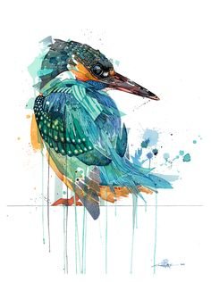 Official Rachel Walker Page. New Zealand watercolour, spray paint, pen and ink artist creating splashy celebrations of native and rare animals. Kingfisher Tattoo, Kingfisher Bird, Watercolor Bird, Watercolor Animals, Rachel Walker, Nz Art, Bird Artwork, Bird Illustration, Pet Birds