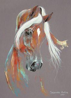 Paulina Stasikowska chestnut arabian horse 2015