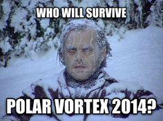 Best Polar Vortex Memes