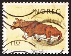 Norway, Cow, Centenary of National Milk Producers Association, ca 1981