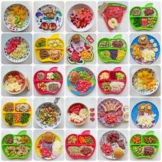 Diana foi uma criança muito desejada. Tive bastante dificuldade pra engravidar e, quando finalmente conseguimos, decidi que faria tudo de melhor por ela: desde o parto, cuidados e alimentação. Por isso, antes mesmo de Diana completar os seis meses, que seria quando introduziríamos alimentos, eu já pesquisava e estudava sobre como fazer, a melhor forma … Healty Lunches, Healthy Snacks, Healthy Recipes, Bento Box Lunch For Kids, Kids Lunch For School, Toddler Meals, Kids Meals, Baby Puree, Kids Nutrition