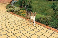 betonová dlažba - široká barevná i povrchová paleta provedení Sidewalk, Patio, Outdoor Decor, Home Decor, Terrace, Interior Design, Home Interior Design, Pavement, Curb Appeal