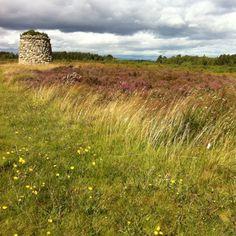 Culloden Battlefield.