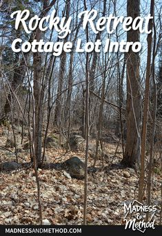 We bought a piece of property to build a vacation home! Check out the photos of the land and welcome to the site of our Rocky Retreat. Waterfront Property, Rental Property, Water House, Vacant Land, Sandy Beaches, Outdoor Projects, Cold Day, More Photos, Bouldering