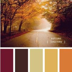 Design Seeds Autumn Journey