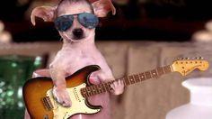 let's Rock Baby http://i.imgur.com/i2tz8PI.jpg