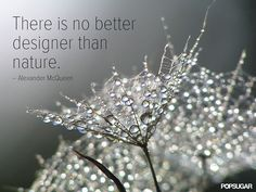 Pin for Later: 32 Famous Fashion Quotes Perfect For Your Pin Board Some of the most beautiful creations come without a single stitch. Alexander Mcqueen Quotes, Famous Fashion Quotes, Quotes To Live By, Me Quotes, Style Quotes, Quotable Quotes, Fashion Words, Wedding Humor, Design Quotes