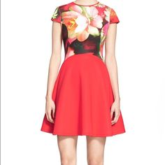 TED BAKER RED FLORAL DRESS New Ted Baker Red Floral Skater Dress Size 1 Ted Baker Dresses