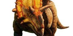 """""""Científicos descubren nueva especie de dinosaurio pariente del Triceratops"""" (LA TERCERA). 8 OCT 2012."""