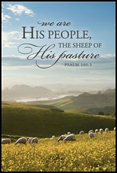 Psalm 100:3 (NKJV) - Know that the Lord, He is God; It is He who has made us, and not we ourselves; We are His people and the sheep of His pasture.