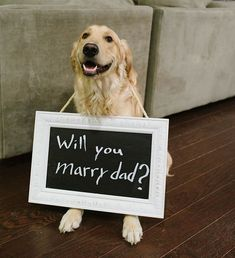 20 Most Romantic Wedding Marriage Proposal Ideas Romantic Proposal, Most Romantic, Romantic Weddings, Proposal Ideas, Wedding Proposals, Marriage Proposals, Wedding Engagement, Engagement Photos, Engagement Rings