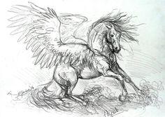 Angel by metzgermeisterrt on DeviantArt Horse Drawings, Cool Art Drawings, Animal Drawings, Pegasus Tattoo, Horse Sketch, Winged Horse, Unicorn Art, Animal Sketches, Horse Art