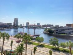 The view from @ccbayshore. Tampa, Bayshore Boulevard.